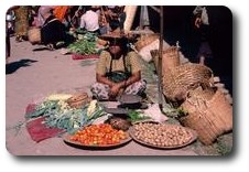Woman selling vegetables at the market, Inle Lake, Myanmar